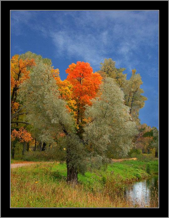 """фото """"Осенние кадры-9"""" метки: пейзаж, осень"""