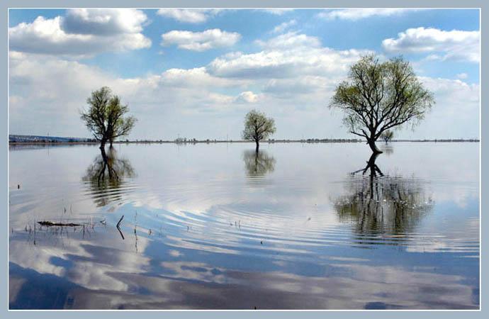 """фото """"Зеркало"""" метки: природа,"""
