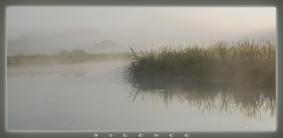 "фото ""Silence"" метки: пейзаж, вода, лето"