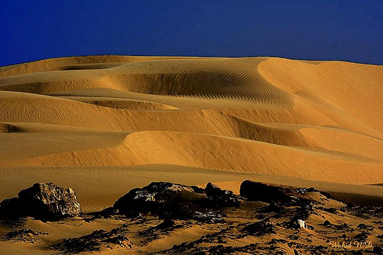 """фото """"Sand Dunes #15"""" метки: природа, путешествия, Африка"""