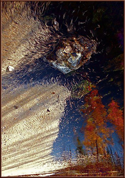 """фото """"Демон осени"""" метки: пейзаж, природа, осень"""
