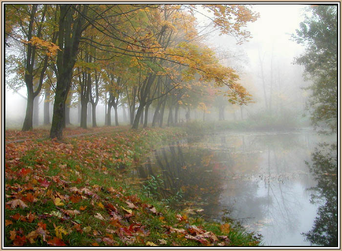 """фото """"На фоне тумана - осень."""" метки: пейзаж, осень"""