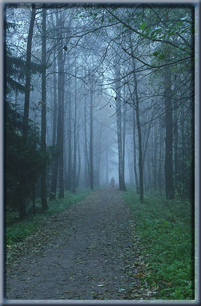 "фото ""just blue"" метки: пейзаж, природа, осень"