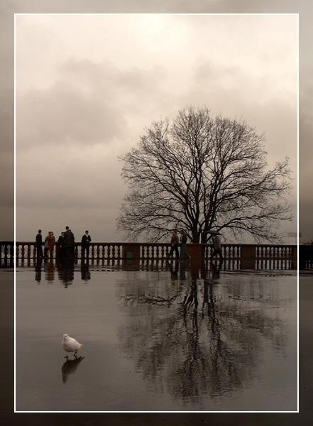 "фото ""Дождь"" метки: пейзаж, вода, осень"