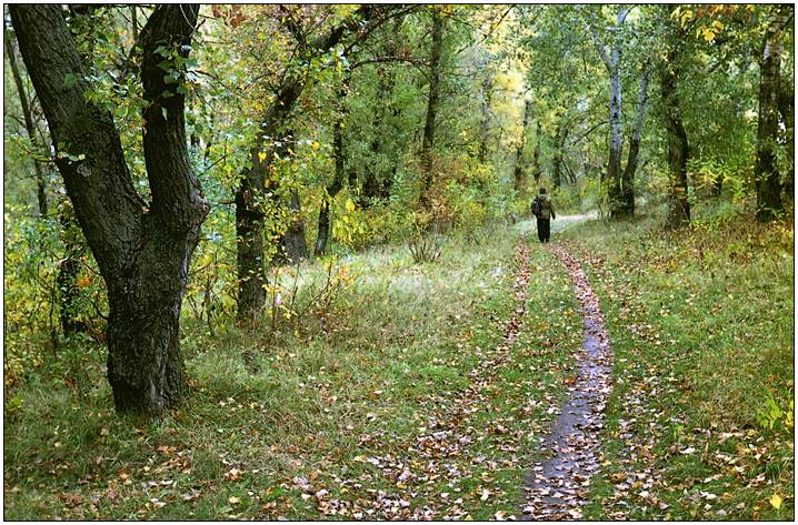 "фото ""Осенний этюд"" метки: разное,"