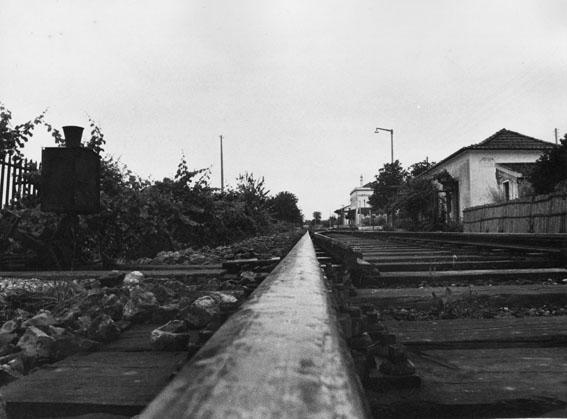 """фото """"the old track"""" метки: черно-белые,"""