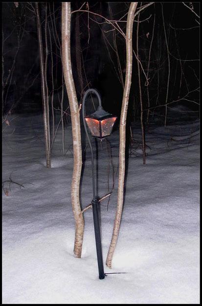 "фото ""Winter etude"" метки: пейзаж, зима"