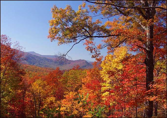 "фото ""Fall`s Finery"" метки: пейзаж, горы, осень"