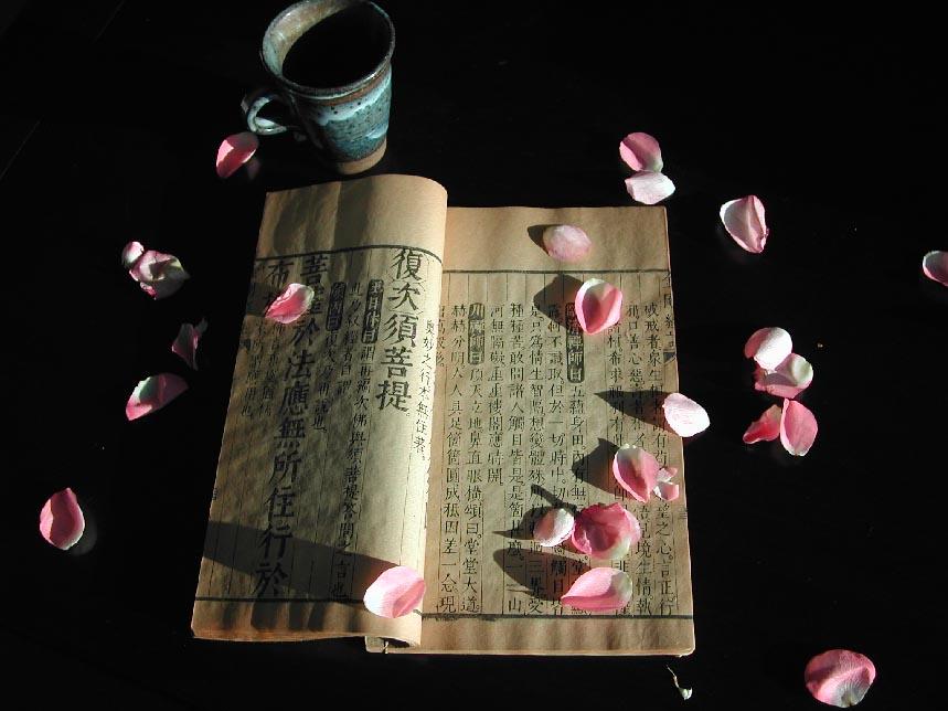 """фото """"Buddist scripture"""" метки: разное,"""