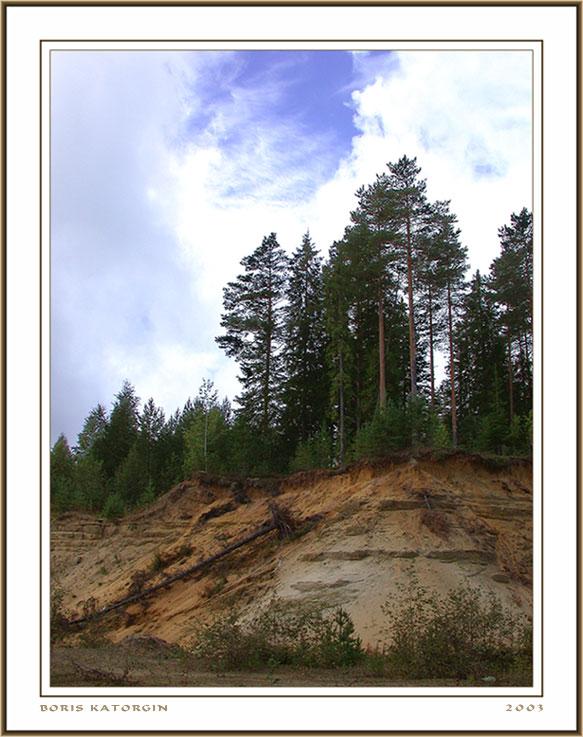 "фото ""Песчаный склон"" метки: пейзаж, лес, лето"