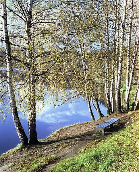 """фото """"красота ПО-РУССКИ"""" метки: природа,"""