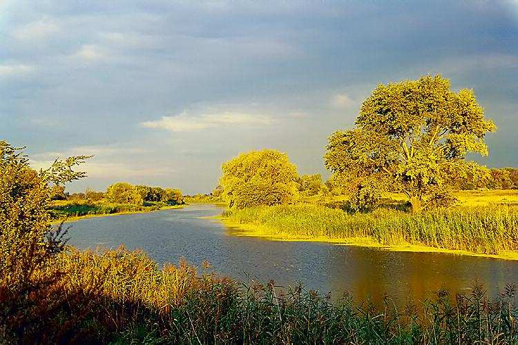 "фото ""Перед закатом"" метки: пейзаж, закат, лето"