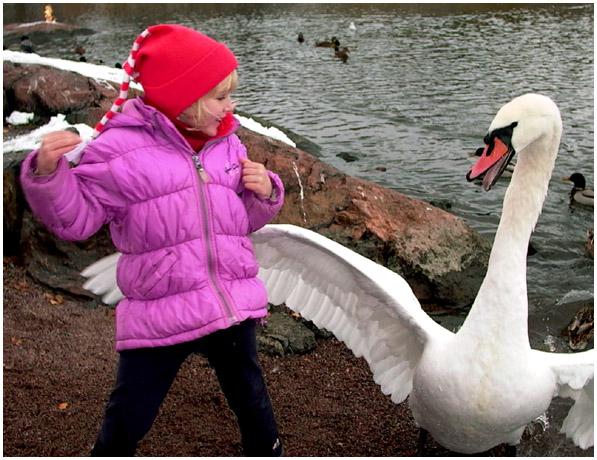 """фото """"Leda and The Swan :)"""" метки: жанр, юмор,"""