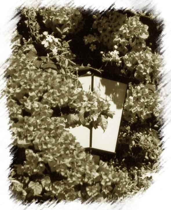 """фото """"The Lonely Lamp"""" метки: разное, фотомонтаж,"""
