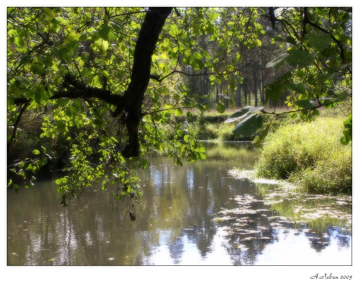 """фото """"**"""" метки: пейзаж, вода"""