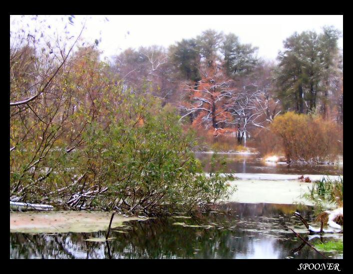 """фото """"Между временем"""" метки: природа, пейзаж, осень"""