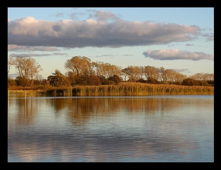 """фото """"The autumn mirror ..."""" метки: пейзаж, вода"""