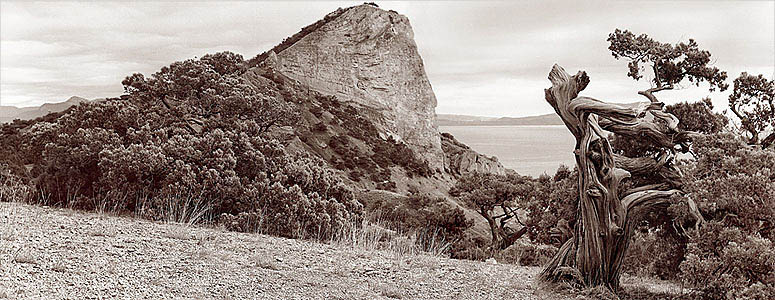 """фото """"По Голицинской тропе. Новый Свет. Крым."""" метки: пейзаж, горы"""