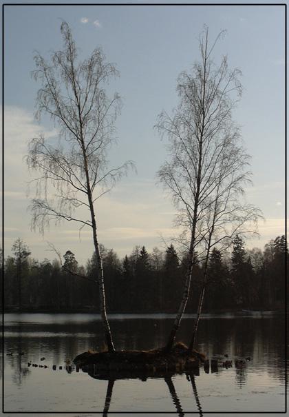 "фото ""Lonely"" метки: пейзаж, весна, вода"