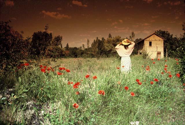 "фото ""Alone"" метки: природа, пейзаж, весна"