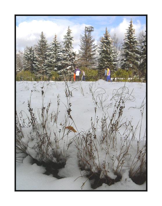 """фото """"Зимний пейзаж"""" метки: пейзаж, макро и крупный план, зима"""