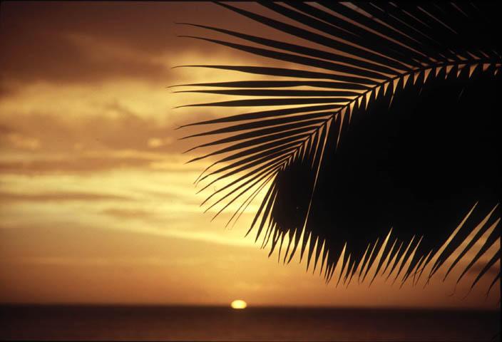 "фото ""le soleil a Moorea (Tahiti)"" метки: пейзаж, природа, закат"