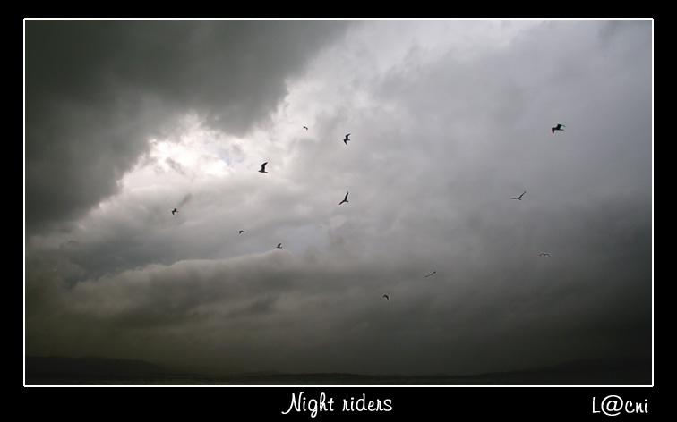 """фото """"night riders"""" метки: пейзаж, ночь, облака"""