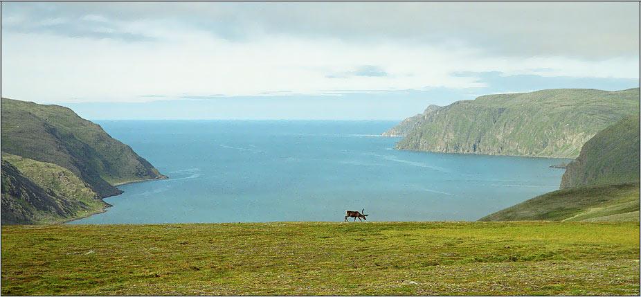 """фото """"Север"""" метки: пейзаж, вода, горы"""