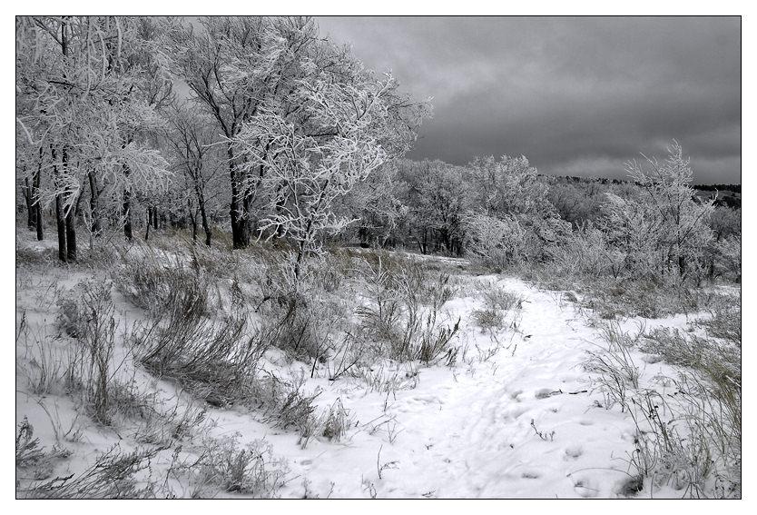 "photo ""..."" tags: landscape, winter"