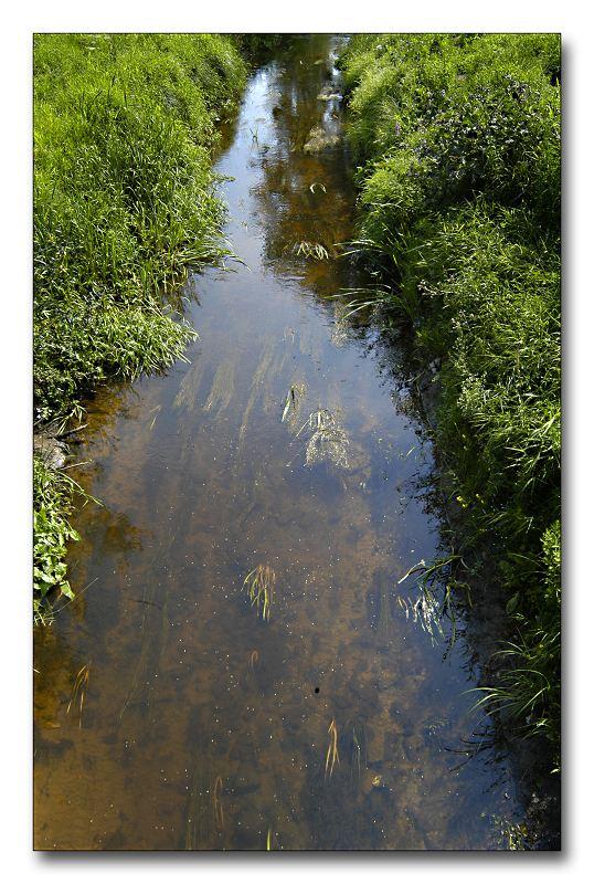 """фото """"В маленькой речке вода как стекло..."""" метки: пейзаж, вода"""