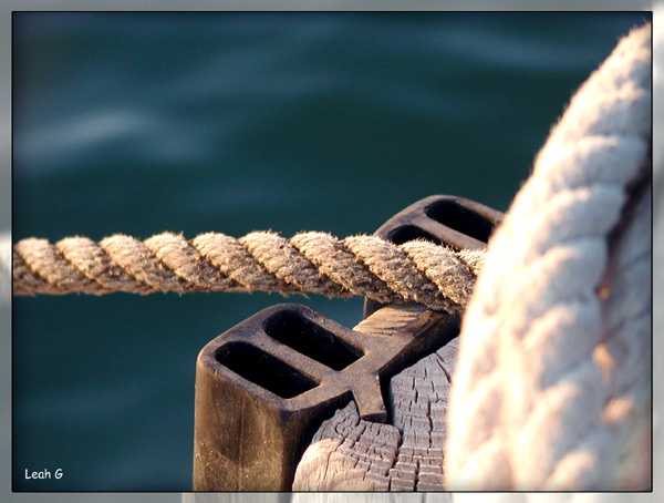 "photo ""Rope"" tags: genre, montage,"