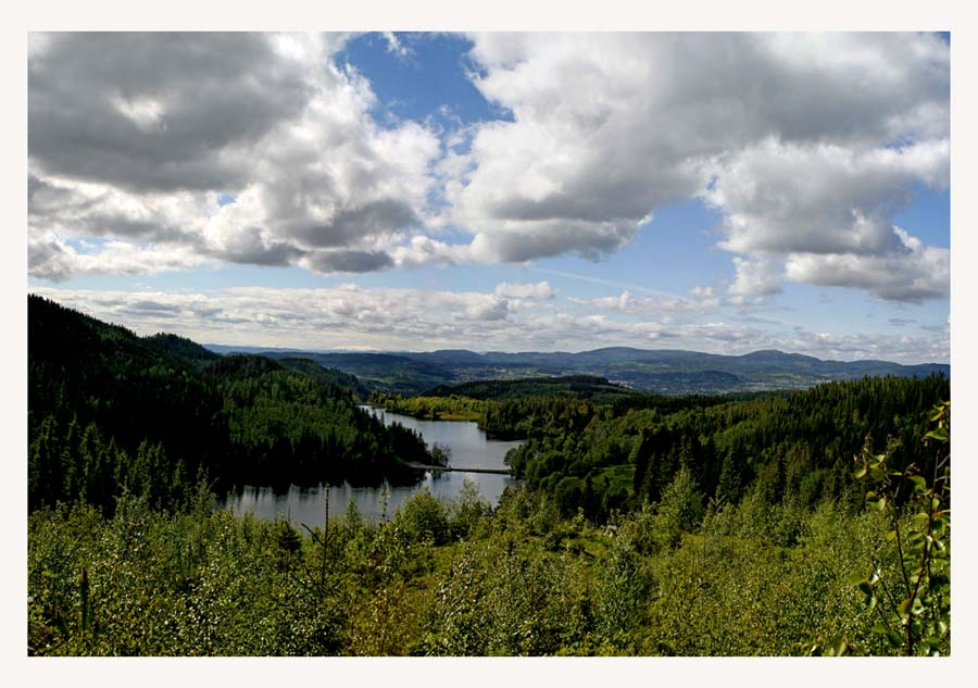 "photo ""Norwegian forest"" tags: landscape,"
