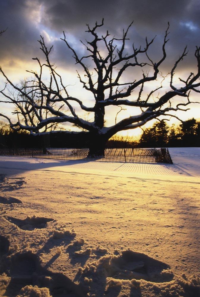 """photo """"Solitude"""" tags: landscape, winter"""