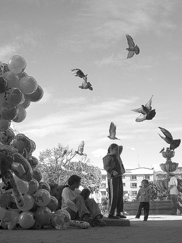 "фото ""Globe & Dove"" метки: черно-белые, натюрморт,"
