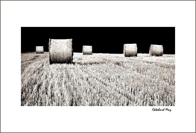 "photo ""annum per annum"" tags: landscape, black&white, summer"