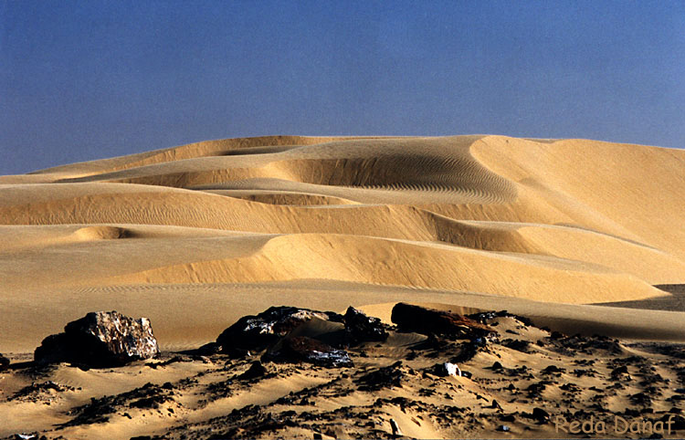 "photo ""Dunes 2"" tags: travel, landscape, Africa"