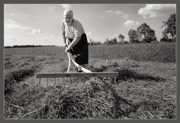 "photo ""Haymaking"" tags: genre, black&white,"
