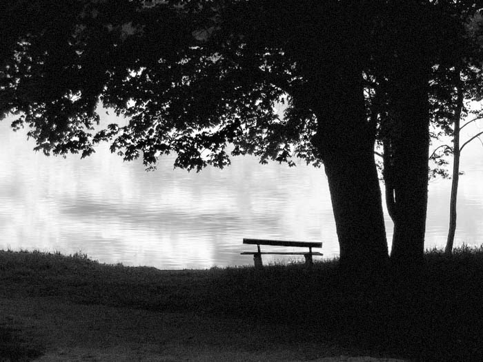 "photo ""evening meditation"" tags: black&white,"