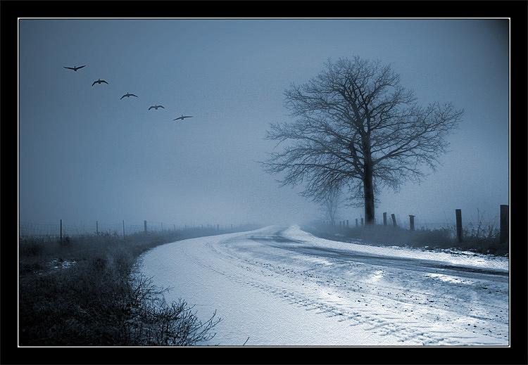 """фото """"Воспоминания"""" метки: пейзаж, фотомонтаж, зима"""