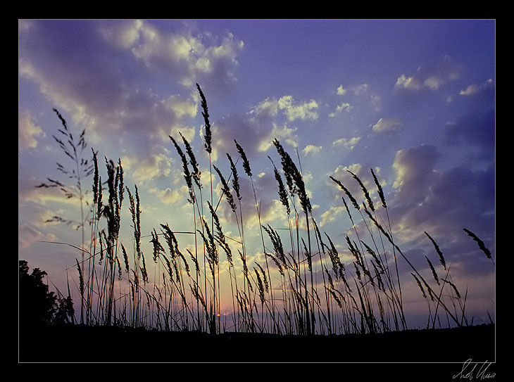 "photo ""Soon night"" tags: landscape, clouds, sunset"