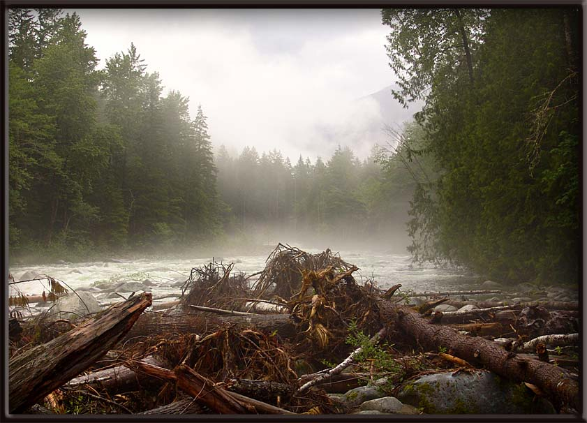 "photo ""Mystic River"" tags: landscape, forest, water"