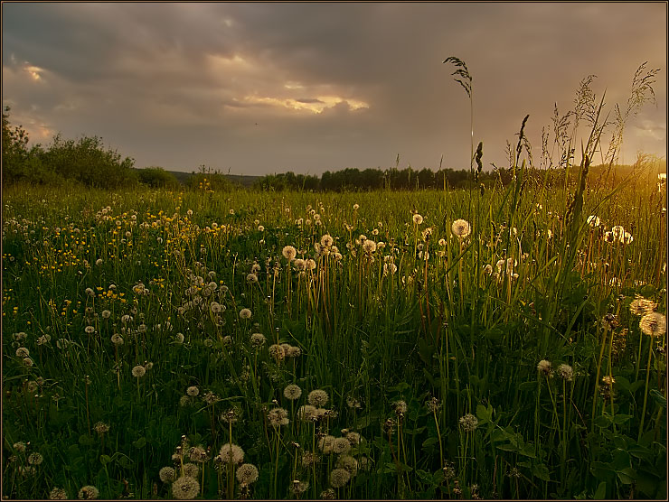 "photo ""The last vernal evening.(Version without the sun i"" tags: landscape, spring, sunset"