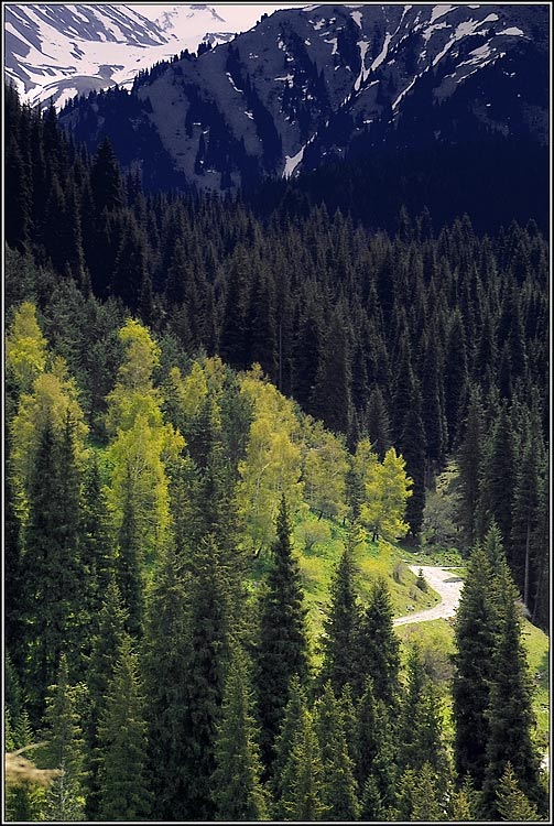"""фото """"Дорога в поднебесье"""" метки: пейзаж, горы"""
