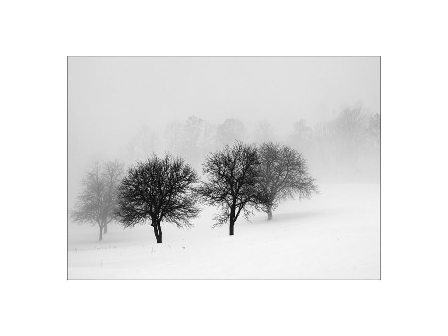 "photo ""7"" tags: black&white,"