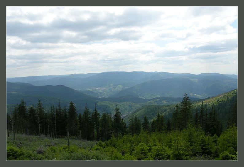 "photo ""Black Forest, Classical landscape"" tags: landscape, summer"