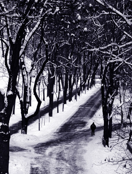 """photo """"The Wrong Path"""" tags: landscape, winter"""