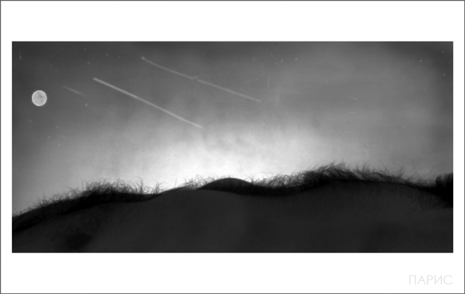 "photo ""Natura"" tags: nude, black&white,"