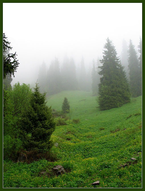 "photo ""Fog in mountains #2"" tags: landscape, mountains"