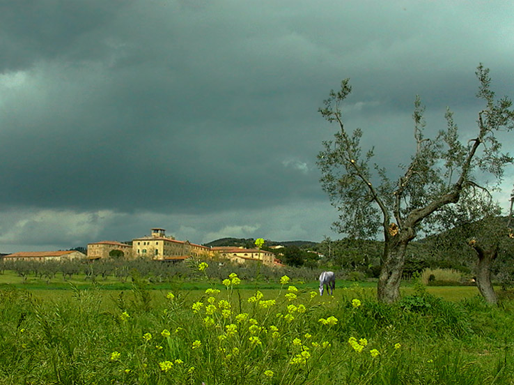 "photo ""The Farmhouse 2"" tags: landscape, clouds, spring"
