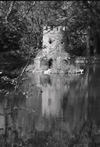 "photo ""Small castle for small creatures"" tags: landscape, black&white, water"